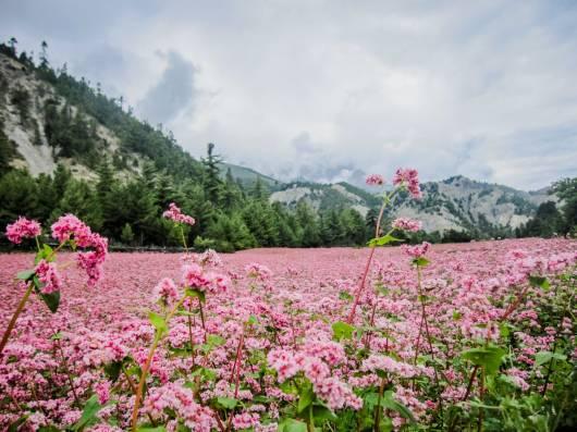 Nepal_fotografija br. 1